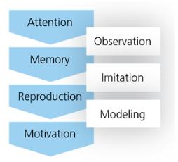 Learning through modeling image
